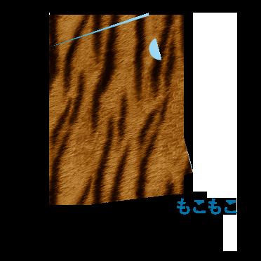 プレミアファイル(特殊素材)